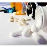 Antibiotiques : 53% des européens pensent à tort qu'ils agissent sur les virus