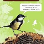 Comptez les oiseaux de votre jardin, le 23 mai prochain !