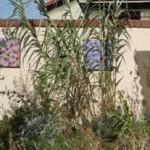Décorer son jardin avec un tableau ?!