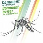 La dengue : ce qu'il faut savoir et comment se protéger