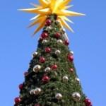 7 conseils pour un Noël plus « vert » !