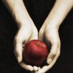 Twilight : soyez LE fan français qui rencontrera Stephenie Meyer, l'auteur de la Saga !