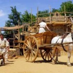 Vacances : 15 bons plans pour les enfants en Bourgogne