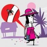 Risque de dengue et de chikungunya : les particuliers doivent participer au plan anti-moustique