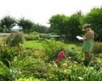 Journée de la Biodiversité au Jardin le 19 juin 2011