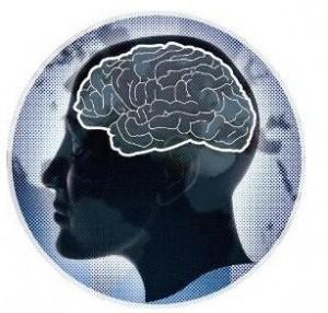 Alzheimer: découverte d'un nouveau gène impliqué dans les formes précoces de la maladie