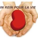 Journée mondiale du rein: rencontre/débat «Don et transplantation rénale» avec les Associations de malades