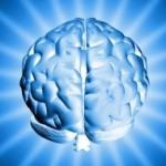 Alzheimer : coup dur pour la recherche