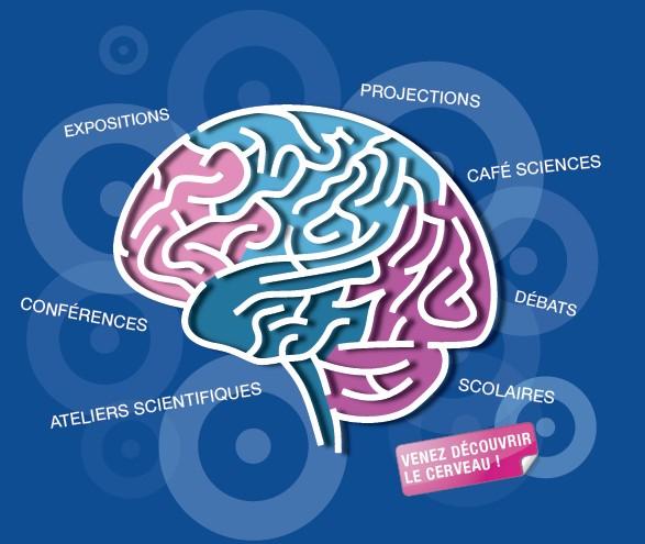 La Semaine du Cerveau se déroulera du 11 au 17 mars 2013