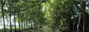 tourisme slow avec les canalous canal du midi