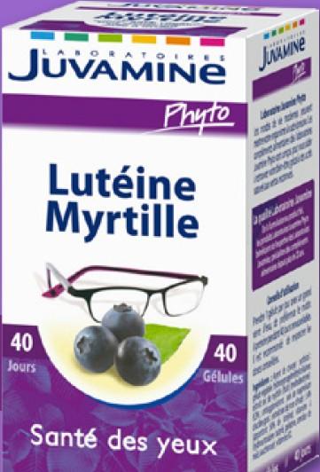 myrtille santé des yeux