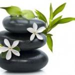 Flower Feng Shui : quelles fleurs et plantes pour un intérieur zen ?