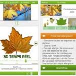 Une appli pour identifier les arbres allergisants !