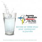 Journée Mondiale du Rein : buvez donc un verre d'eau !