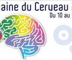 La Semaine du cerveau 2014 se déroule jusqu'au dimanche 16 mars