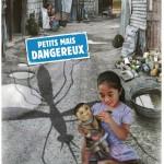 Journée mondiale de la Santé : gare aux moustiques !