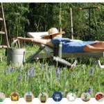 10 gestes simples pour accueillir la biodiversité dans son jardin