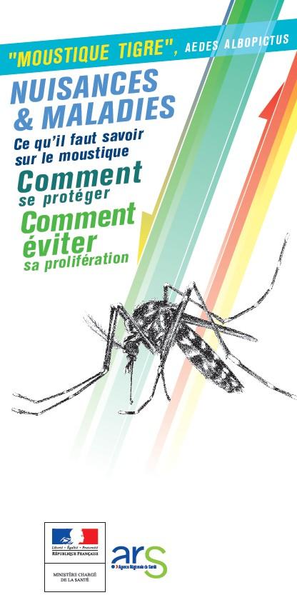 Dengue, chikungunya… le moustique-tigre s'installe en France