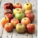 La pomme, le fruit préféré des Français