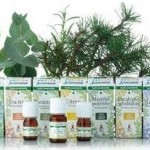 Les Laboratoires Juvamine lancent l'aromathérapie en hyper