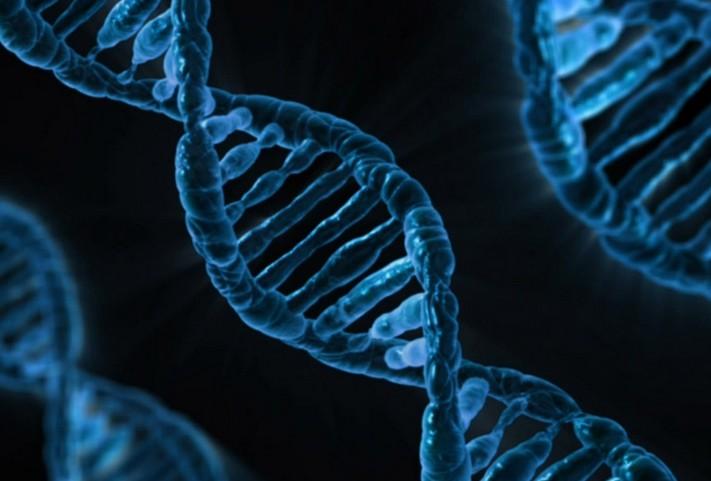 La France annonce un plan pour développer la médecine personnalisée