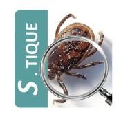 Maladie de Lyme : une appli smartphone pour lutter contre les tiques