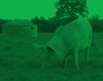élevage bio